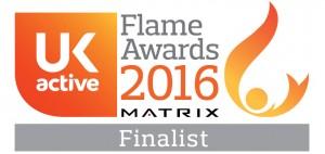 Flame Awards 2016 - Finalist Logo